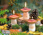Pilzkerzen mit Pinus (Kiefernzapfen)