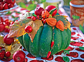 Cucurbita (grüner Kürbis), Malus (Apfel)