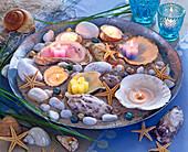 Zinkschale mit Sand, Muscheln, Steinen, Seesternen