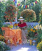 Begonia Illumination ' Orange ' (Girlandenbegonie), Calibrachoa Celebration