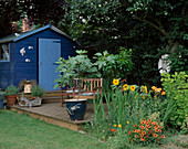 COLOURFUL BORDERS AND Blue SUMMERHOUSE with DECKING IN Rosemary PEARSONS Garden, READING