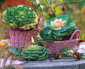 Brassica (cabbage) in pink baskets, cabbage candle