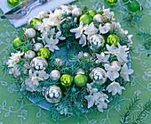 Gesteckter Kranz aus Narcissus tazetta (Tazetten) und Juniperus communis