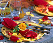 Acer (Ahornblatt), Rosa (Rosenblüte) auf roter Serviette