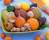 Schale mit exotischem Obst: Citrus (Orange, Zitrone)