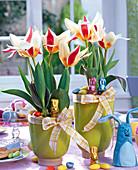 Tulipa 'The First' (Tulpen), dekoriert mit Hasen, Eiern, Filzhasen