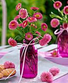 Bellis (Tausendschön) in kleiner lila Flasche, dekoriert mit rosa Band