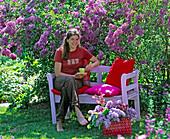 Frau mit Kaffeetasse auf rosa Holzbank vor blühendem Syringa vulgaris