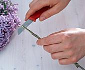 Fliederstrauß in Glasvase / mit Lilien: 2/4