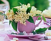 Blüten von Sambucus (Holunder) in rosa Kaffeetasse, Zuckerherzen
