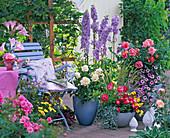 Rosa (Rosen), Delphinium (Rittersporn), Petunia 'Red Morn'