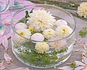 Blüten von weißen Dahlia (Dahlien), Anethum (Dill), weiße Schwimmkerzen