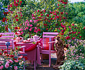Terrasse mit Rosa 'Flammentanz' (Kletterrosen)