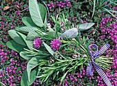 Kräuterstrauß mit Salvia (Salbei), Rosmarinus (Rosmarin), Thymus