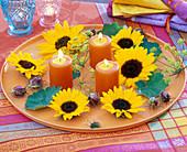 Blüten von Helianthus (Sonnenblumen), Anethum (Dill), Samenstände