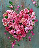 Herz aus Rosa (rosa Rosen) auf Holz