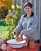 Frau reinigt Tontöpfe mit Wurzelbürste und Wasser