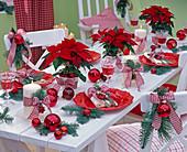 Tischdekoration in rot-weiß mit Abies (Tanne), Euphorbia (Weihnachtssternen)