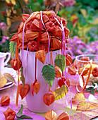 Physalis - Kugel auf rosa Vase: 5/5