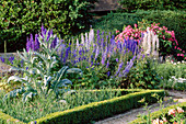 THE PRIORY, BEECH HILL, Berkshire: AMERICAN PILLAR ROSE TRAINED OVER TRELLIS, Delphinium AND CARDOON IN TRIANGULAR PICKING BED