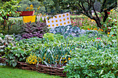 VEGETABLE Garden at Rosendal, SWEDEN: RAISED WICKER BED with LEEKS AND OTHER VEGETABLES