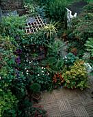 Handtuchgarten mit Fuchsia (Fuchsien), Crocosmia