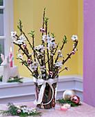 Prunus dulcis (Süße Mandel) als Barbarazweige