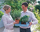 Junges Paar mit Kräutern in hellblauer Obststiege