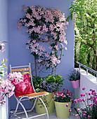 Vorher - Nachher - Balkon mit hellblauer Wand