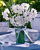 Strauß aus weißen Narcissus 'Ziva' syn. 'Paperwhite' (Tazett - Narzissen)