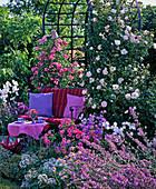 Gartenbank vor Rosenlaube