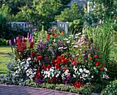 Buntes Beet mit Sommerblumen und Stauden: Lobelia Kompliment Mix