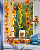 Calendula, threaded flowers hanging from the window, glasses