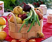 Allium (Zwiebeln, Gemüsezwiebeln, rote Zwiebeln, Frühlingszwiebeln, Schalotten)
