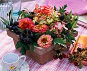 Gesteck aus Zinnia (Zinnien), Vitis (Weintrauben), Rubus (Brombeeren)