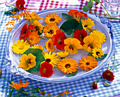 Edible flowers, Tropaeolum, Calendula