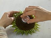 Sonnenblumenblüten als Teelichthalter : 2/5