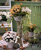 weiße Schale mit Chrysanthemum (Herbstchrysanthemen)
