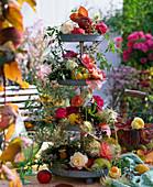 Rosa (Rosen), Ranken von Clematis (Waldrebe), Malus (Äpfel), Cydonia