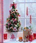 Picea glauca 'Conica' (Zuckerhutfichte) geschmückt