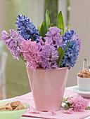 Hyacinthus (Hyazinthen) in rosa Keramikvase