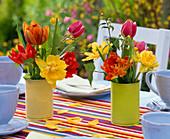 Kleine Sträuße aus Tulipa (Tulpen) und Kerria (Kerrie) in farbigen Dosen
