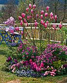 Rundbeet im kleinen Garten