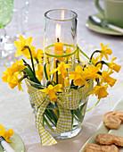Windlicht aus zwei ineinandergestellten Gläsern mit Narcissus (Narzissen)