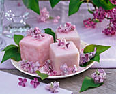 Sugared flowers of syringa (lilac) on petit-fours
