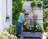 Selbstgebauter Pflanzkasten mit Rückwand als Sichtschutz