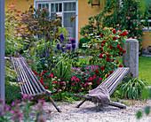 Rosa 'Grandhotel' (Strauchrose), Cleome 'Senorita Rosalita'