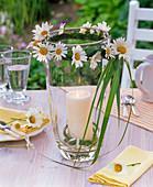 Windlicht mit Leucanthemum (Frühlings - Margeriten) und Gräsern um hohes Glas