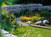 Beet mit Echinacea (Sonnenhut) und Gräsern vor Trockenmauer