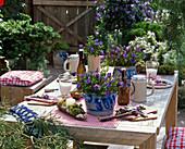 Alpenflair : Gedeckter Tisch mit Gentiana scabra (Herbstenzian)
